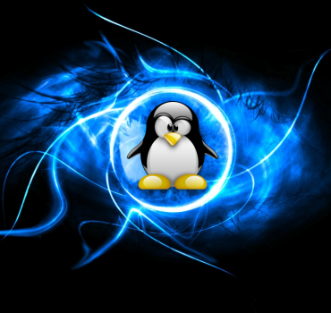 Por Qué Preferir un Servidor Dedicado Linux