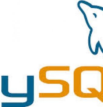 MySQL, la Base de Datos más Usada